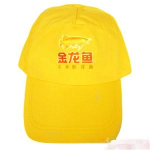 帽子 006